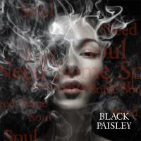 Lyssna på Black  Paisley´s nya singel